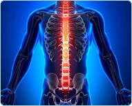 Лечение боли в спине кинезио тейпом : Универсальный метод кинезиотейпирования при боли в спине